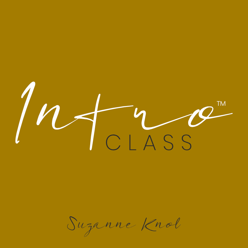 Suzanne Knol Intro Class
